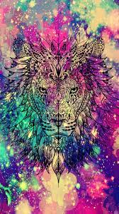 Lion Galaxy Wallpapers on WallpaperDog