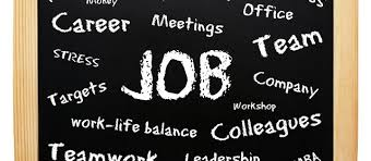 Image result for career and jobs