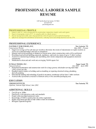 Example Of Professional Summary For Resume Professional Summary Examples For Resume T File Pertaining To 24 24a 23