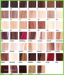 Kadus Professional Hair Color Chart Bahangit Co