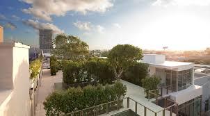 photos from rooftop garden