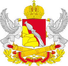 Муниципальные контрольно счетные органы МКcО СКСО ВО  36voronezhskay obl g1