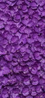 Iphone Wallpaper Hd Purple - Iphone ...