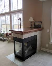 home decor amazing propane fireplace insert with er design decor contemporary in home interior amazing