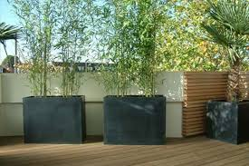 Small Picture Contemporary planting of a London roof garden Urban Tropics