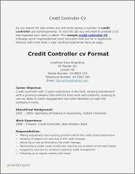 30 Fresh Resume Samples For General Accountants Jonahfeingold Com