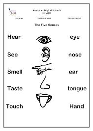 Five Senses Worksheets Preschool