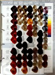 Maraes Hair Color Chart Jeval Colour Chart Supasave Hair Beauty