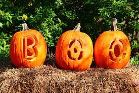 Pumpkin Designs For Kids Easy 11 Creative Pumpkin Carving Ideas For Halloween 2019 That