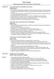 Transaction Monitoring Resume Sample Transaction Monitoring Resume Samples Velvet Jobs 2