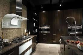 Wenge Wood Kitchen Cabinets Cabinet Wenge Kitchen Cabinet