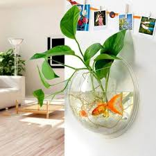 Decorative Fish Bowls Best Fish Bowl Decorations Products On Wanelo 56
