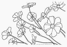 Small Picture Flower Page Printable Coloring Sheets Nature Coloring Pages