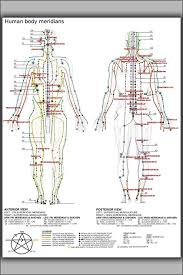 Chinese Meridian Chart Pdf 24x36 Poster Chinese Or Human Body Meridians For Martial Arts Medicine