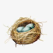 bird nest with eggs clipart. Fine Bird Nest Birdu0027s Nest Eggs PNG Image And Clipart To Bird Nest With S
