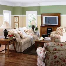 Trendy Living Room Paint Ideas  Amazing Homes - Livingroom paint color