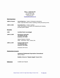 Examples Of Resumes For High School Students 24 Inspirational Examples Of Resumes Simple Resume Format Simple 7
