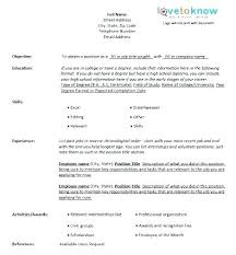 Example Of A Good Chronological Resume Stunning Free Reverse Chronological Resume Template Sample Format