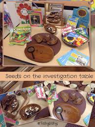 The 25+ best Science Table ideas on Pinterest | Science center ...