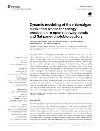 Design Of Raceway Ponds For Producing Microalgae Pdf Dynamic Modeling Of The Microalgae Cultivation Phase