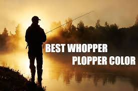 What Is The Best Whopper Plopper Color My Top 5 Choices
