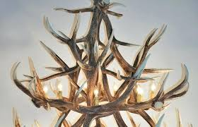 deer horn lights s white antler chandelier