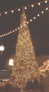 garden lighting design designers installers. Tree Lighting And Festoon Used Together For This Commercial  Holiday Installation Garden Design Designers Installers