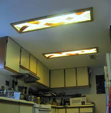 Kitchen Grow Lights Opinion Diy Fluorescent Light Cover Fluorescent Grow Lights