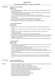 Video Game Designer Responsibilities Game Designer Resume Samples Velvet Jobs
