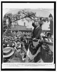 """theodore roosevelt the strenuous life  theodore roosevelt """"the strenuous life"""" 10 1899 1901"""