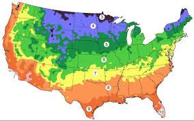 Vegetable Garden Planting Chart Vegetable Planting Schedule Hardiness Zone Look Up