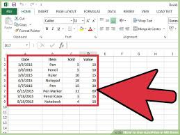 Ms Excel How To Use Autofilter In Ms Excel 7 Steps With Pictures