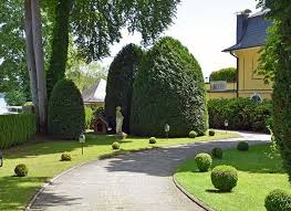 evergreen landscaping company abu dhabi. select the evergreen variety to add a touch of nature\u0027s wilderness your backyard all year round. landscaping company abu dhabi w