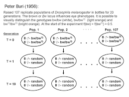 matt hamilton exemplar clicker use in biology clickers slide1