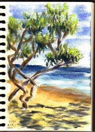 New Sketching Technique With Pan Pastels Feltmagnet