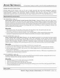 Auto Sales Manager Resume Sample Amazing Account Executive Resume