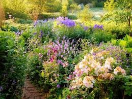 Small Picture Online Perennial Course Garden Design