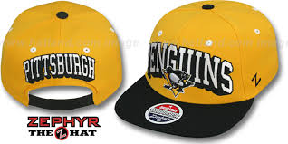 Zephyr Hat Size Chart New Era Cheap Hats Free Shipping New Era Penguins 2t