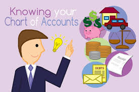 Account Master Global Solution Knowing Your Chart Of