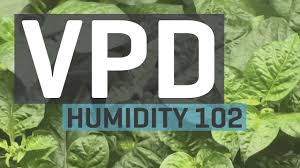 vpd chart vapor pressure deficit the hidden force on your plants