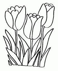 Printable Coloring Pages For Girls Flowers Learning Printable