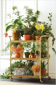 13 Fresh Ideas for Indoor Planter Stands 2