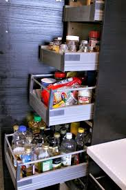 Ikea: Tall Pantry Cabinet With Pull Out Shelves, So You Can Reach  Everything (even At The Back). (between Fridge And Stove) Discovery Street:  Our Love/Hate ...
