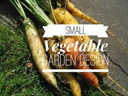 Small Picture Small Vegetable Garden Try These Layout Ideas Gardening Channel
