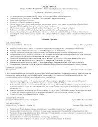 50 professional accountant resume example 100 resume help