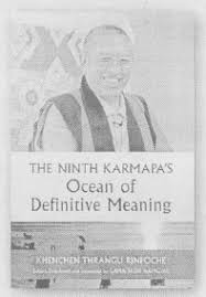 definitive meaning. the most in-depth and famed text on mahamudra ever written, ocean of definitive meaning by 9th karmapa offers a detailed, uniquely comprehensive c