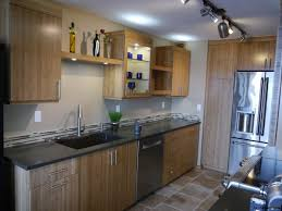 Bamboo Cabinets Kitchen Queen Anne Seattle Modern Kitchen Remodel With Bamboo Cabinetry
