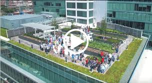google office video. google headquarters video by abp news office in hindi download chicago joey helms