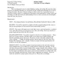 the narrative essay essays sample eecfedfe college narrative essay sample papers narrative essay sample papers interview outline narrative mla format example