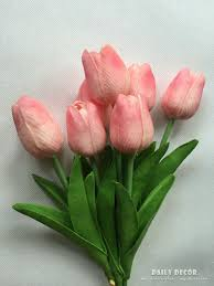 Image result for small tulip flower